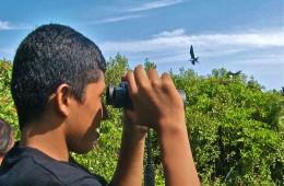 Bird Watching Tours